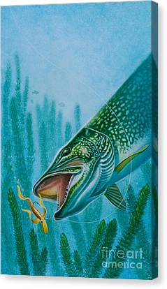 Pike And Jig Canvas Print by Jon Q Wright