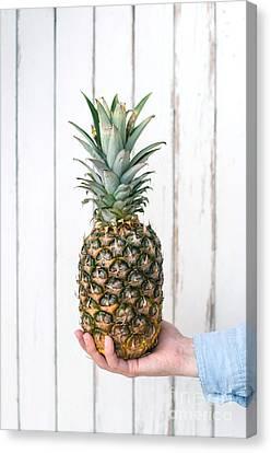 Pineapple Canvas Print by Viktor Pravdica