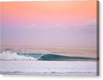 Pink Pipe Canvas Print by Sean Davey