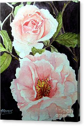 Pink Roses Canvas Print by Carol Grimes