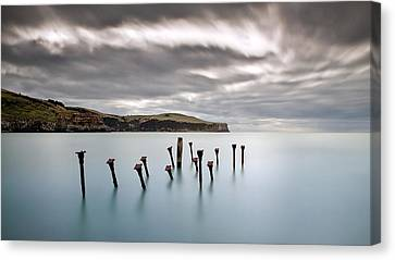 Pinned In Time Canvas Print by Brad Grove