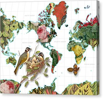 Plant World Map Canvas Print by Gary Grayson