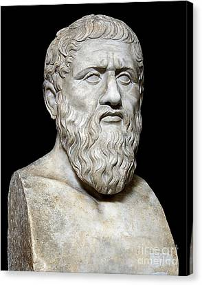 Rational Canvas Print - Plato by Sheila Terry