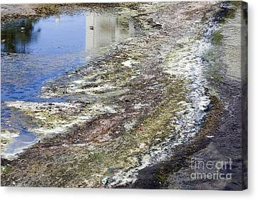 Polluted River, Usa Canvas Print
