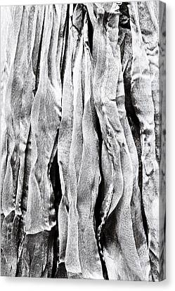 Wavy Canvas Print - Polyester by Tom Gowanlock