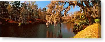 Pond In A Garden, Middleton Place Canvas Print by Panoramic Images