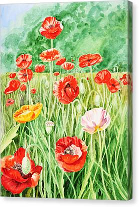 Poppies Canvas Print by Irina Sztukowski