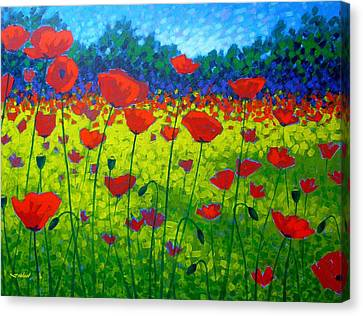 Poppy Field Canvas Print by John  Nolan