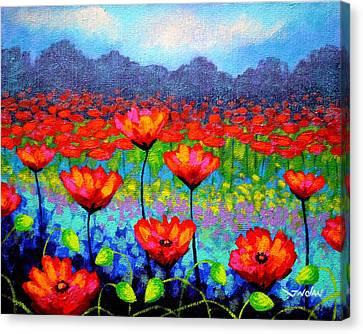 Edition Canvas Print - Poppy Vista by John  Nolan