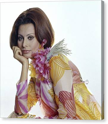 Portrait Of Sophia Loren Canvas Print by Henry Clarke