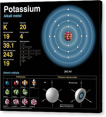 Potassium Canvas Print by Carlos Clarivan