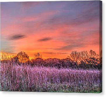Illinois Prairie Moments Before Sunrise Canvas Print