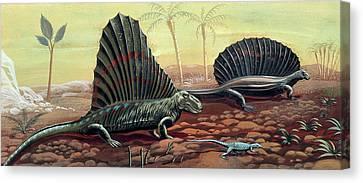 Prehistoric Reptiles Canvas Print
