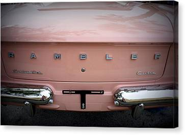 Canvas Print featuring the photograph Pretty In Pink by Laurie Perry