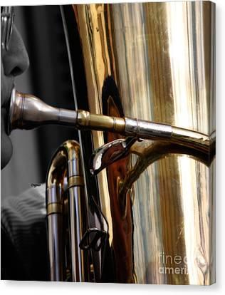 Profile In Tuba Canvas Print by Steven Digman