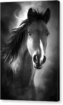 Profile Portrait Of A Horse Canvas Print by Ronel Broderick