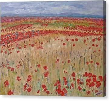 Provence Poppies Canvas Print by Barbara Anna Knauf