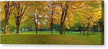 Public Park In Autumn Colors, Gresham Canvas Print by Panoramic Images