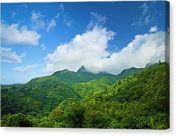 Puerto Rico, Luquillo, El Yunque Canvas Print by Miva Stock