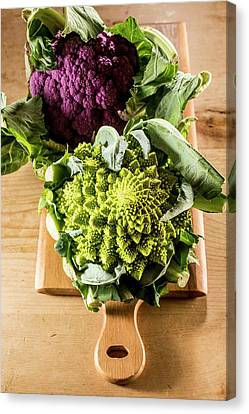 Purple And Romanesque Cauliflowers Canvas Print by Aberration Films Ltd