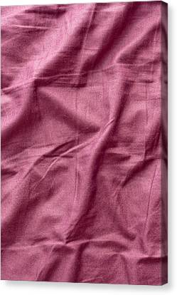 Purple Sheet Canvas Print by Tom Gowanlock