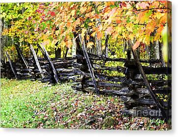 Rail Fence Fall Color Canvas Print by Thomas R Fletcher