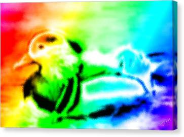 Rainbow Duck Canvas Print by Bruce Nutting