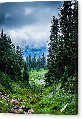 Rainer Glacial Meadow Canvas Print by Allen Biedrzycki