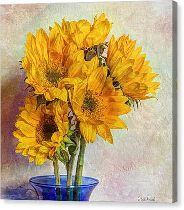Reaching For The Sun Canvas Print by Heidi Smith