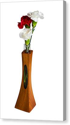 Red And White Spray Carnations In Teak Vase Canvas Print by Steven Heap