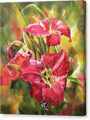 Red Daylilies Canvas Print by Alfred Ng