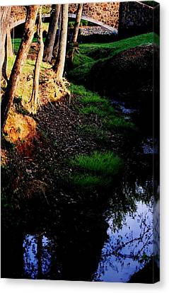 Canvas Print featuring the photograph Reflection2 by Steve Godleski