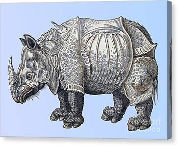 Rhinoceros Historiae Animalium 16th Canvas Print