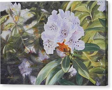 Rhododendron Jungle Canvas Print by Adel Nemeth