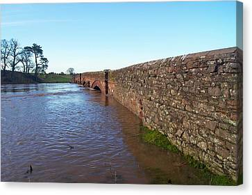River Eden Flooding. Canvas Print by Mark Williamson