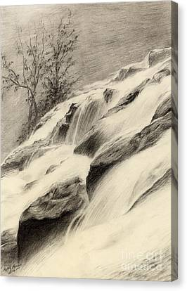 River Stream Canvas Print by Hailey E Herrera