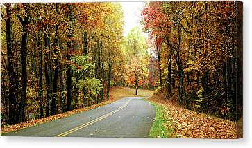Road Passing Through A Forest, Blue Canvas Print by Panoramic Images