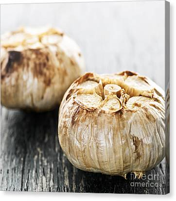 Roasted Garlic Bulbs Canvas Print by Elena Elisseeva