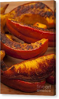 Roasted Pumpkin Canvas Print by Elena Elisseeva