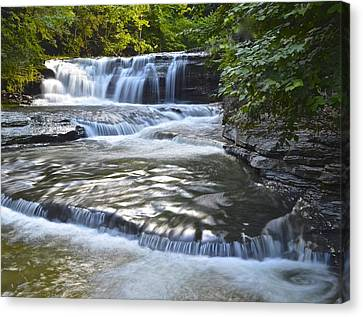 Robert Treman State Park Canvas Print