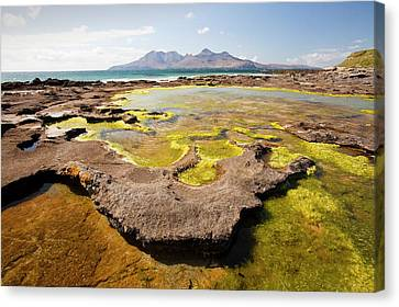 Sandy Beach Canvas Print - Rock Formations At The Bay Of Laig by Ashley Cooper
