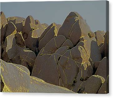 Rock Shapes 2 Canvas Print
