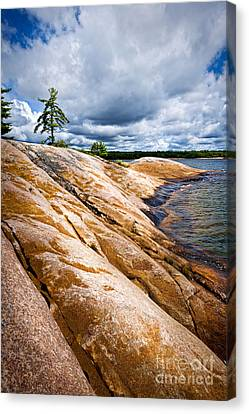 Rocky Shore Of Georgian Bay Canvas Print