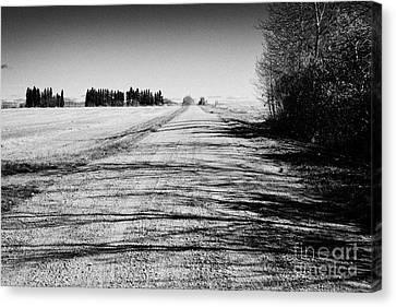 rough rural unpaved gravel road in remote Saskatchewan Canada Canvas Print