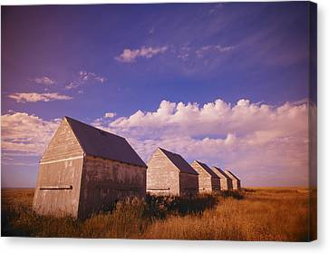 Row Of Old Farm Houses Canvas Print by Kelly Redinger