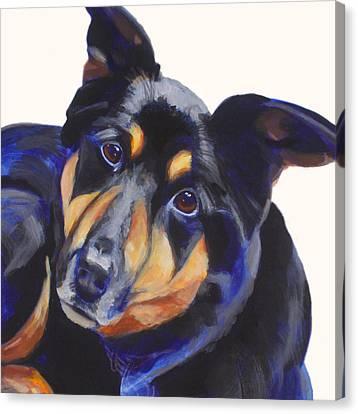Roxy Canvas Print by Sarah Vandenbusch