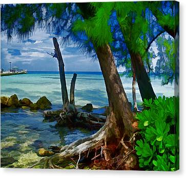 Rum Point Canvas Print
