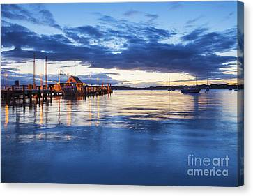 Russell Bay Of Islands New Zealand Canvas Print by Colin and Linda McKie