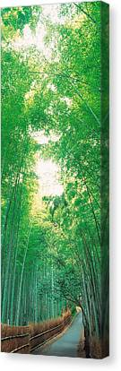 Sagano Kyoto Japan Canvas Print by Panoramic Images