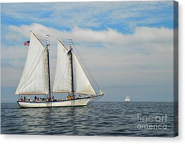 Sailing The Open Seas Canvas Print by Allen Beatty